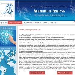 What is Bioenergetic Analysis ?