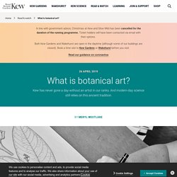 What is botanical art?