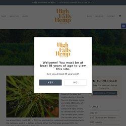 What is CBD - High Falls Hemp
