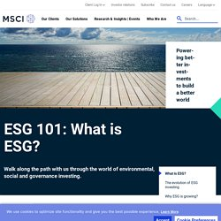 What is ESG