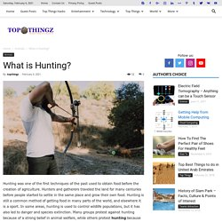 What is Hunting? - TopThingz