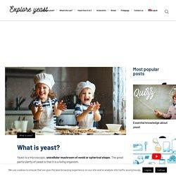 Explore yeast