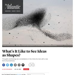 What's It Like to See Ideas as Shapes?