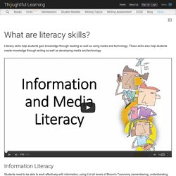 What are literacy skills?