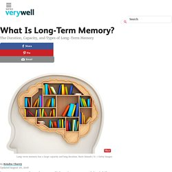What Is Long-Term Memory? How Does It Work?