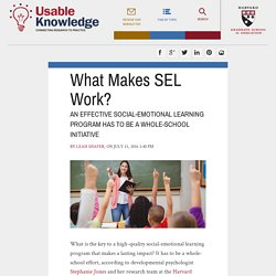 What Makes SEL Work?