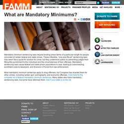 What are Mandatory Minimums?