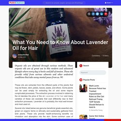 What You Need to Know About Lavender Oil for Hair