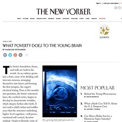 What Poverty Does to the Young Brain