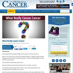 What Really Causes Cancer