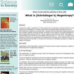 What is (Schröger's) Negentropy?