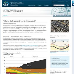US Energy Information Administration