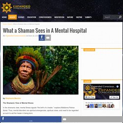 What a Shaman Sees in A Mental Hospital - Expanded Consciousness