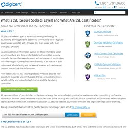 What Is SSL (Secure Sockets Layer)?