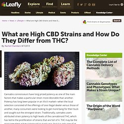 What are High CBD Strains and How Do They Differ from THC?
