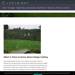 What Is There to Know About Hedge Cutting