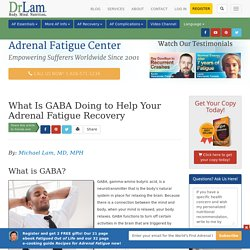 What Is GABA and How Is It Useful to Adrenal Fatigue?