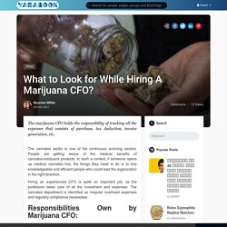 What to Look for While Hiring A Marijuana CFO?