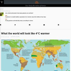 What the World Will Look Like 4°C Warmer