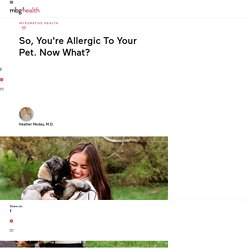 What To Do If You Are Allergic To Your Pet