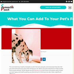 What You Can Add to Your Pet's Food Bowl?