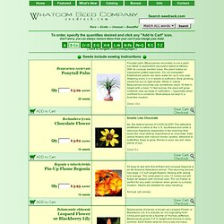 Whatcom Seed Company - Catalog of Rare, Exotic, Unusual Garden Seeds