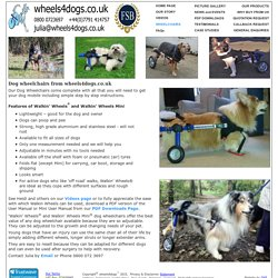 Wheelchairs for Dogs and other walking aids