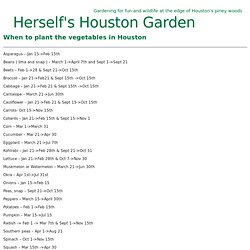 When to plant the vegetables in Houston