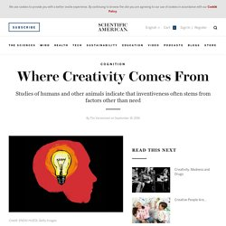Where Creativity Comes From
