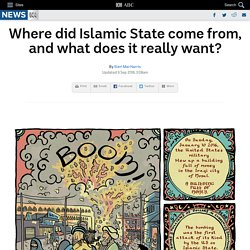 Where did Islamic State come from, and what does it really want?