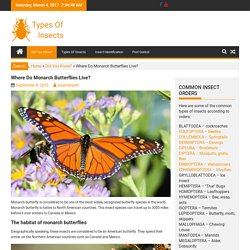 Where Do Monarch Butterflies Live?