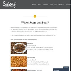 Which bugs can I eat? – Gastrobug