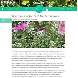 Which Seeds to Start First? Five Easy Answers