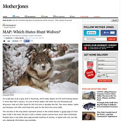 MAP: Which States Hunt Wolves?