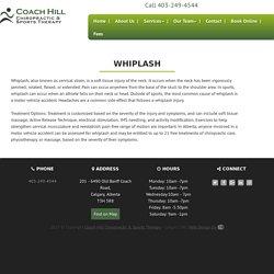 Chiropractor Calgary SW