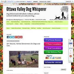 Ottawa Valley Dog Whisperer : DIY Natural, Herbal Dewormers for Dogs and Cats