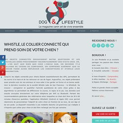Whistle, le collier connecté qui prend soin de votre chien ?
