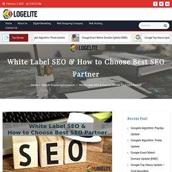 White Label SEO & How to Choose Best SEO Partner - Logelite