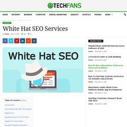 White Hat SEO Services - TechFans.net