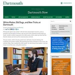 White Matter, Old Dogs, and New Tricks at Dartmouth