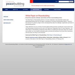 White Paper on Peacebuilding