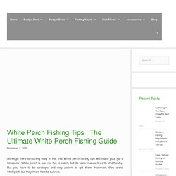 The Ultimate White Perch Fishing Guide