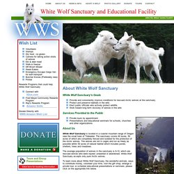 White Wolf Sanctuary