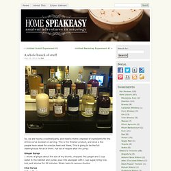 A whole bunch of stuff « Home Speakeasy