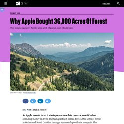 Why Apple Bought 36,000 Acres Of Forest