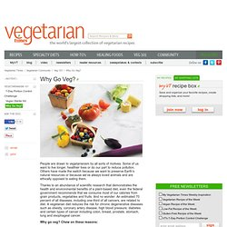 Becoming a Vegetarian