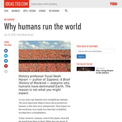 Why humans run the world