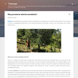 Why you need an arborist consultation?