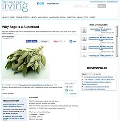 Why Sage is a Superfood