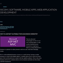 Why Is ASP.NET Suitable For A Business Website?